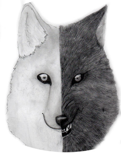 lupo bianco.nero